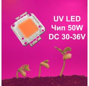 Светодиоден чип за растения 50W