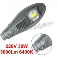 30W Улична лампа 3000Lm 6400K 220V